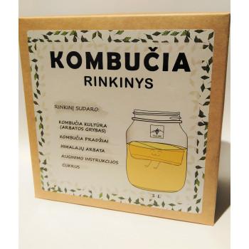 Kombucha making kit, Tealure